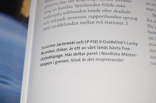 DSC_0847