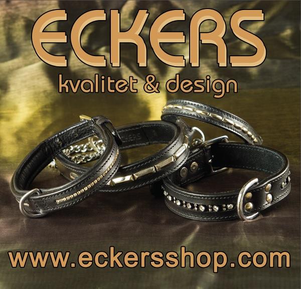 Eckers