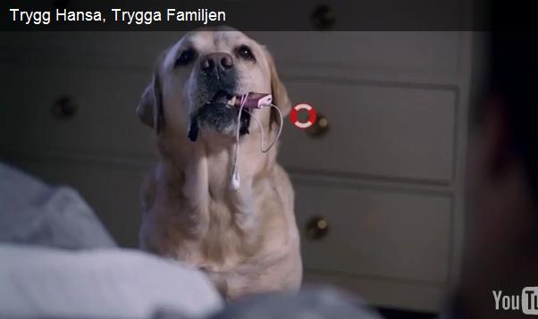 Oskar i reklamfilm för Trygghansa, 2010